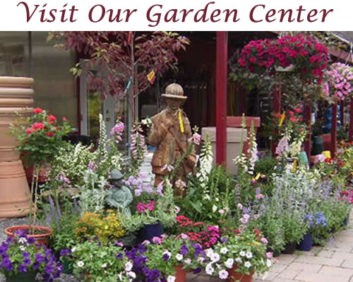 Friendly Service Wide Selection At Our Grafton Garden Center
